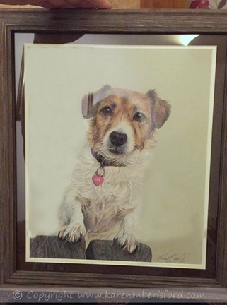 jack russell coloured pencil portrait in brown frame