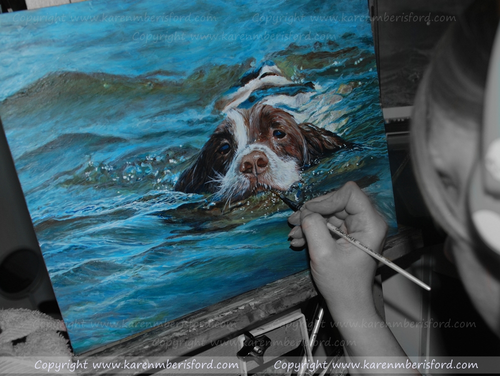 Springer Spaniel swimming in water being completed in Acrylic paints on board