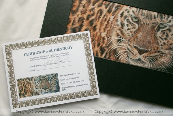 Amur Leopard Coloured Pencil portrait print for sale with the Certificate of Authenticity