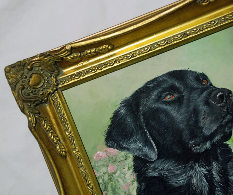 Black Labrador retriever framed in a gold swept frame