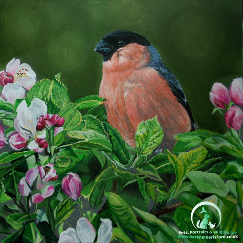 Acrylic painting of a Bullfinch in an Apple Blossom tree
