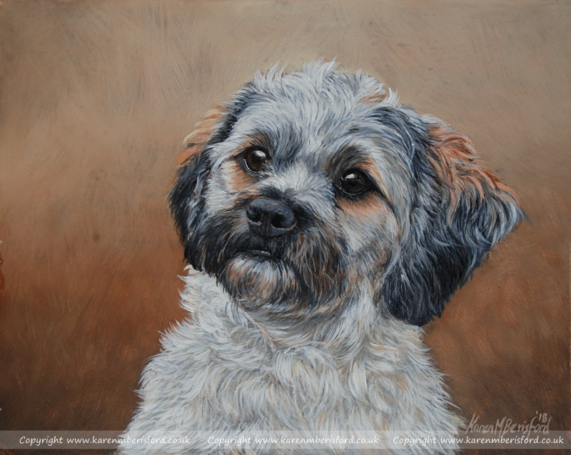 Shipoo dog acrylic painting