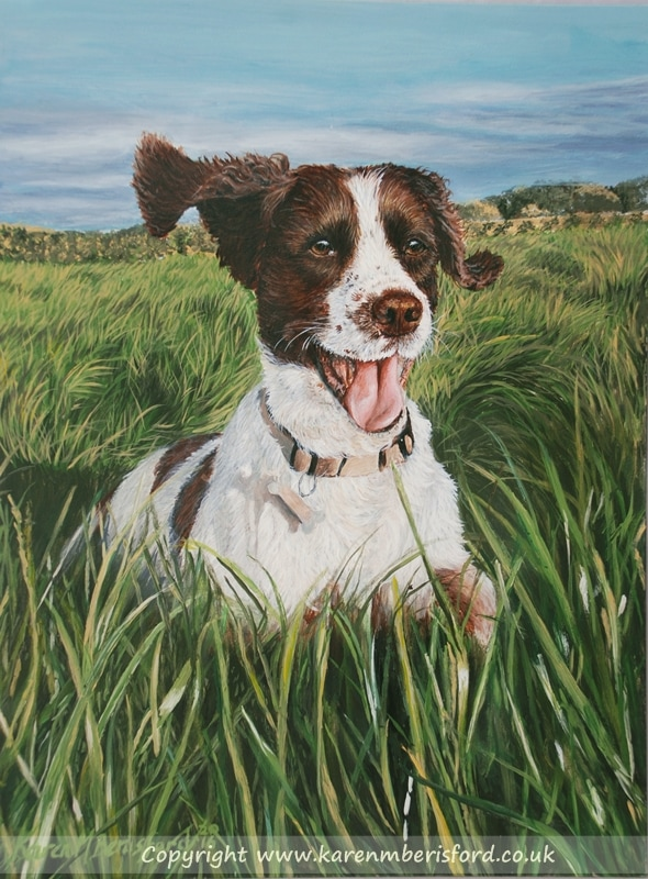 Acrylic painting on Ampersand Gessobord of a Springer spaniel running through long grass in the sun
