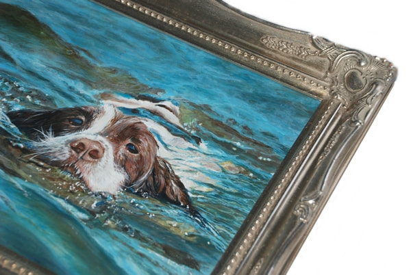 Springer Spaniel Acrylic painting framed in a silver moulding