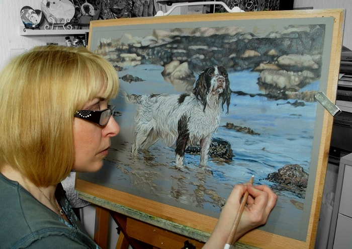 artist Karen in the studio drawing a Springer Spaniel dog in Coloured pencils