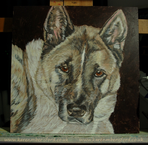 Base layers of an acrylic painting of a Japanese Akita dog