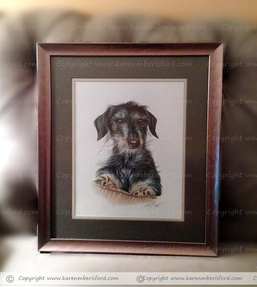 A bronze frame with brown double mount of a Coloured pencil portrait of a long haired daschund