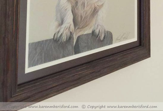 frame up close of jack russell pencil portrait