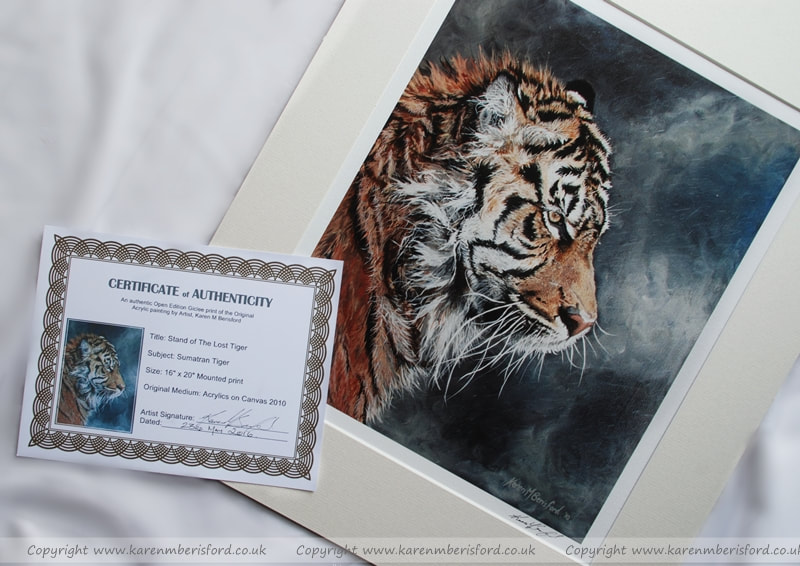 Giclee print of a Sumatran Tiger with ivory mount and certificate of Authenticity